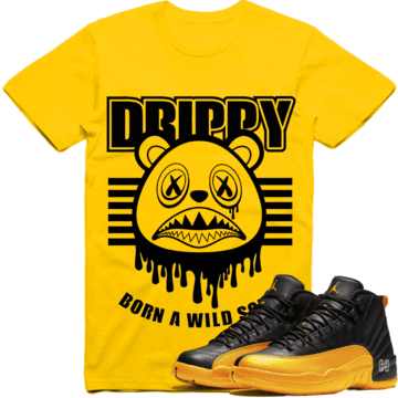 sneaker-clothing-shirts-t-shirt-jordan-retro-12-university-gold-gary-payton-sneaker-tees-shirt-to-match-drippy-baws-13834779033657_360x